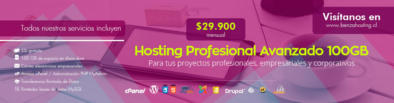 Hosting Profesionales chile